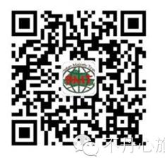 BMT QR Code